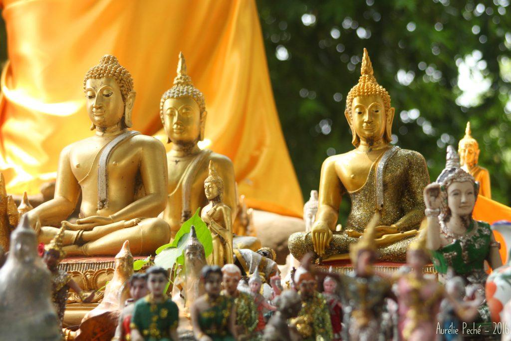 Statuettes de bouddha - Ayutthaya (Thaïlande)