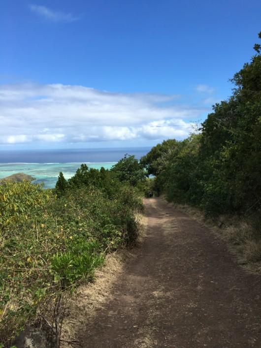 La descente offre également de jolies vues - île Maurice (Morne Brabant)