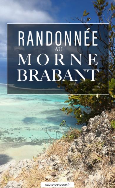 Randonnée au Morne Brabant - île Maurice