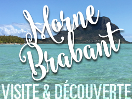 Ascension du Morne Brabant