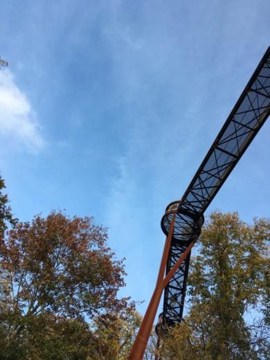 The Treetop walkway - Kew Gardens