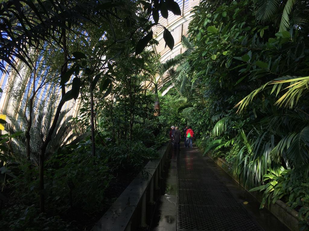 Intérieur de la Palm House