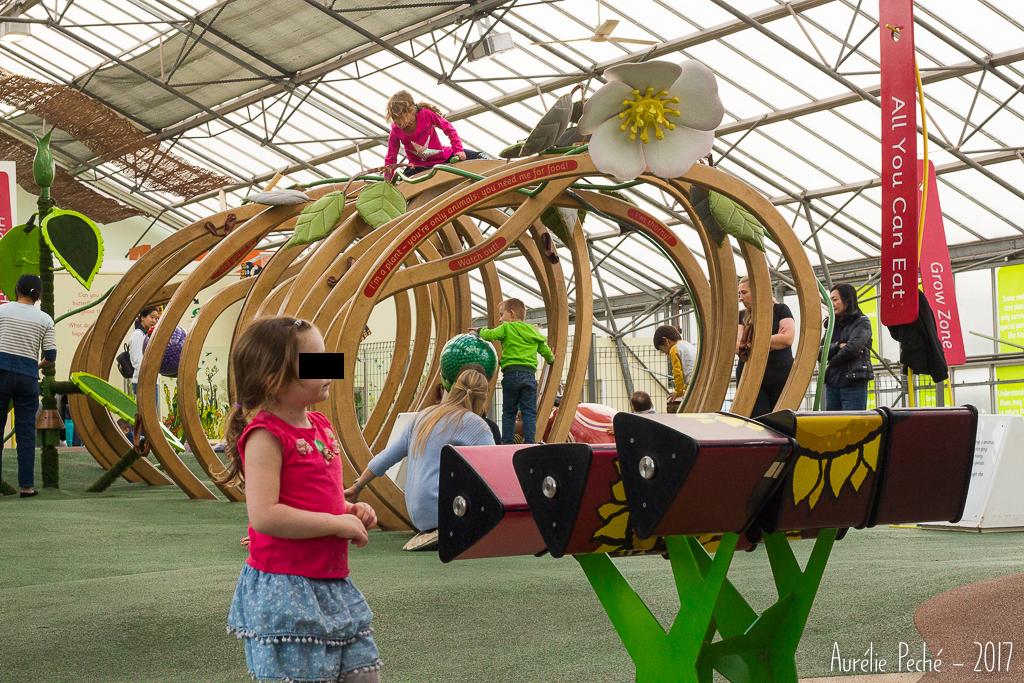 Kew Gardens - Climbers and Creepers