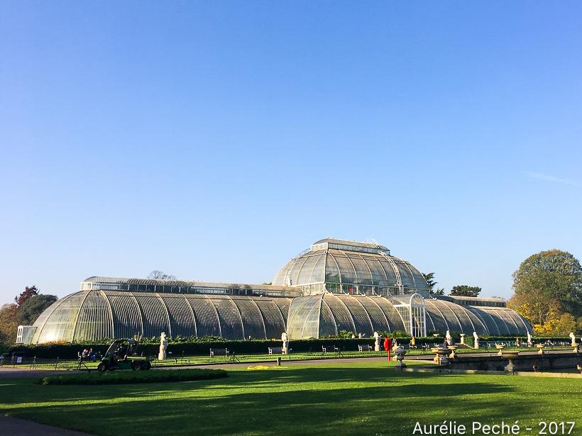 Serres de Kew Gardens