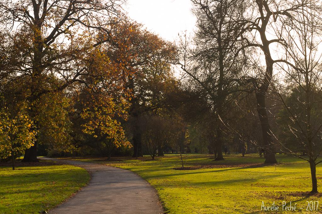 Promenade dans Kew Gardens