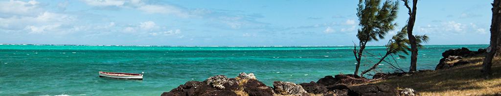 Sauts de puce sur l'île Maurice et Rodrigues