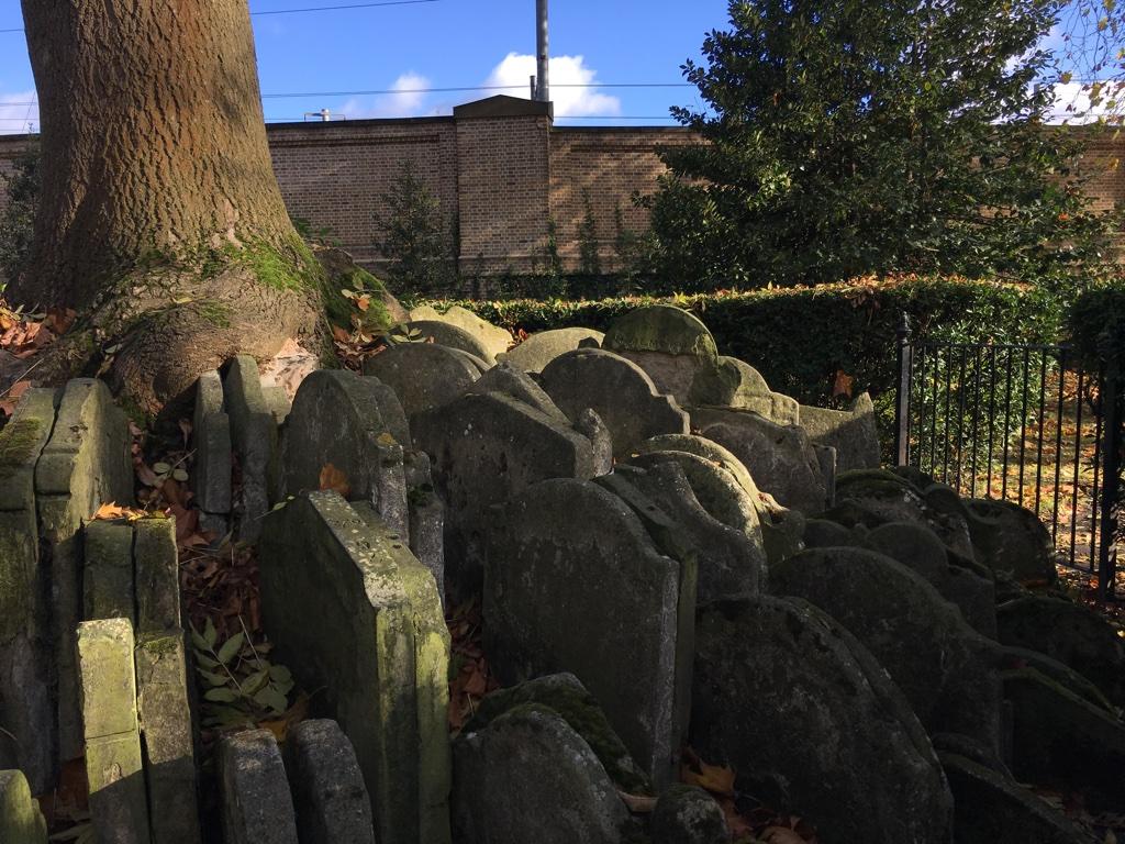 Hardy's tree dans la cimetière de Saint-Pancras