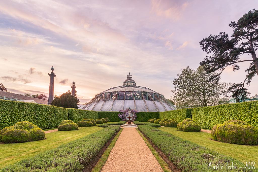 Serres de Laeken - Jardin d'hiver