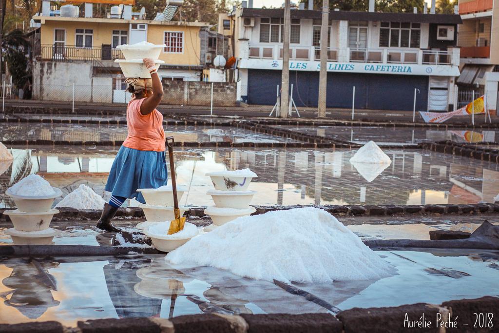 Saunière dans les salines de Yemen à Tamarin