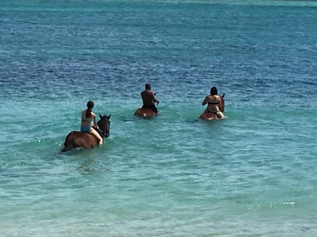 Balade à cheval sur l'île Maurice