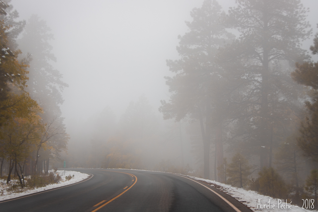 Brouillard au Grand-Canyon