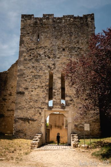 Chateau des Adhémar - Montélimar