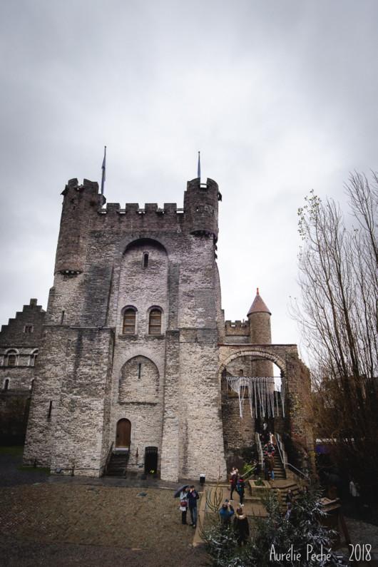 Chateau des comtes