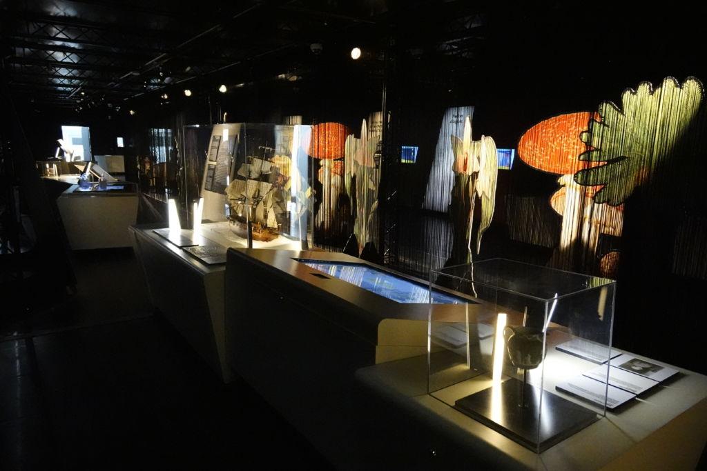 Exposition Darwin, l'original