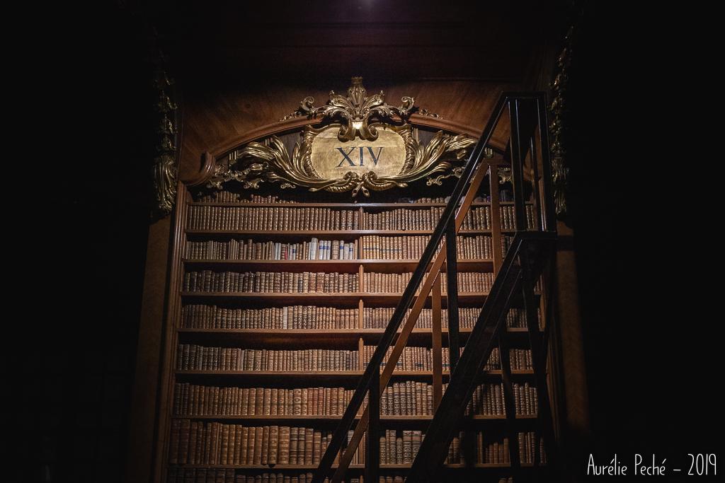 Salle d'apparat de la bibliothèque de Vienne