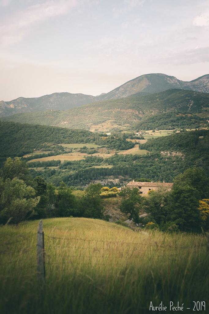 Chemin dans la Drôme