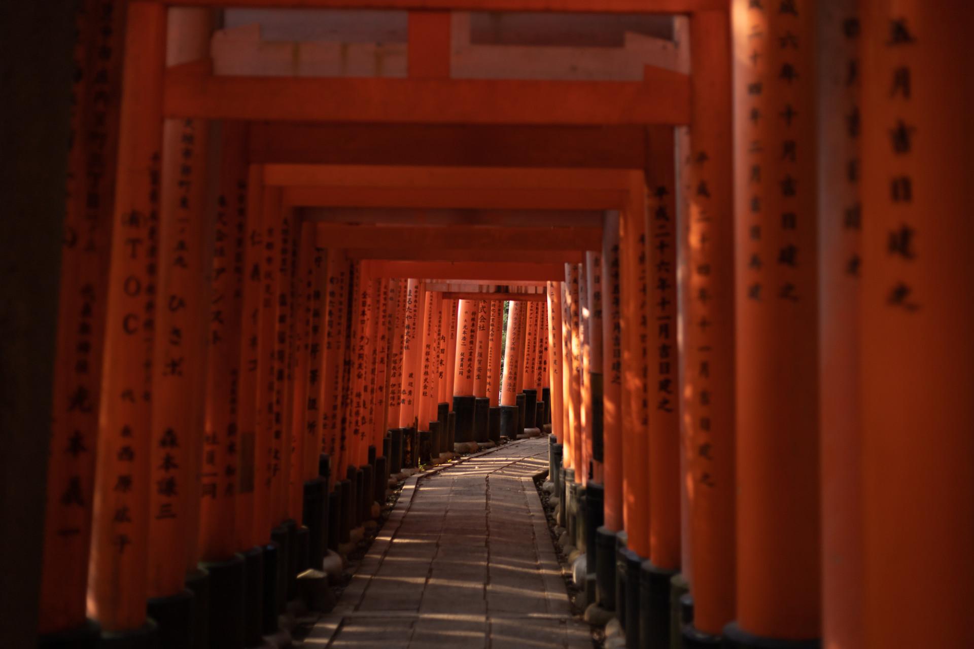 Le Fushimi Inari-Taisha vide en pleine après-midi