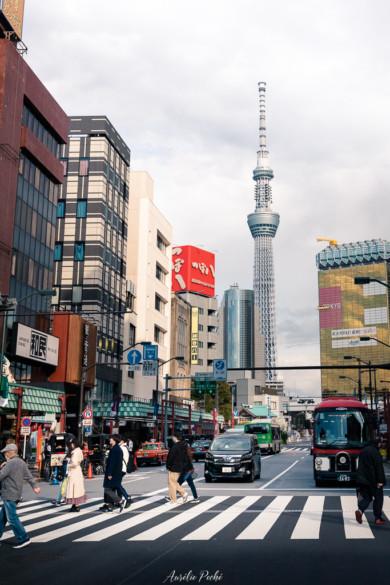 Vue sur la Tokyo Skytree