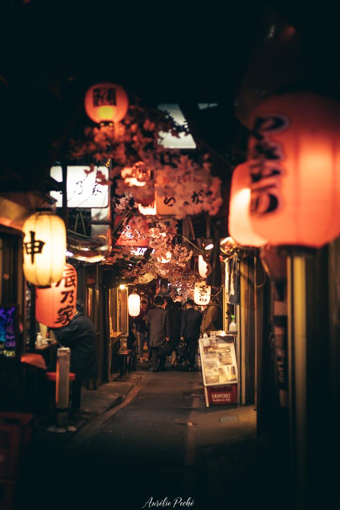 Memory Lane - Yakitori Alley