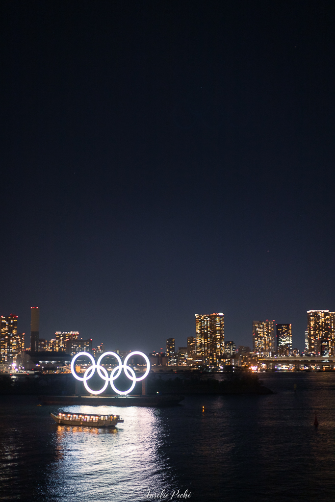 Vue sur la baie de Tokyo de nuit