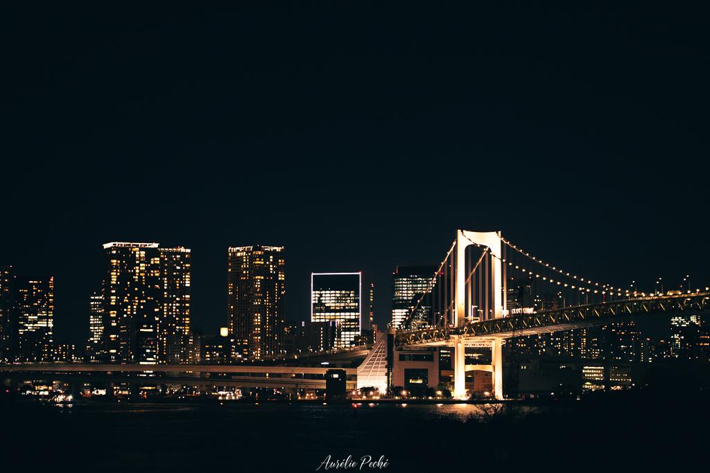 Vue sur la baie de Tokyo et le rainbow bridge de nuit