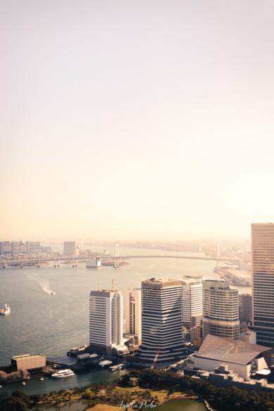 Vue sur Tokyo depuis la tour Dentsu