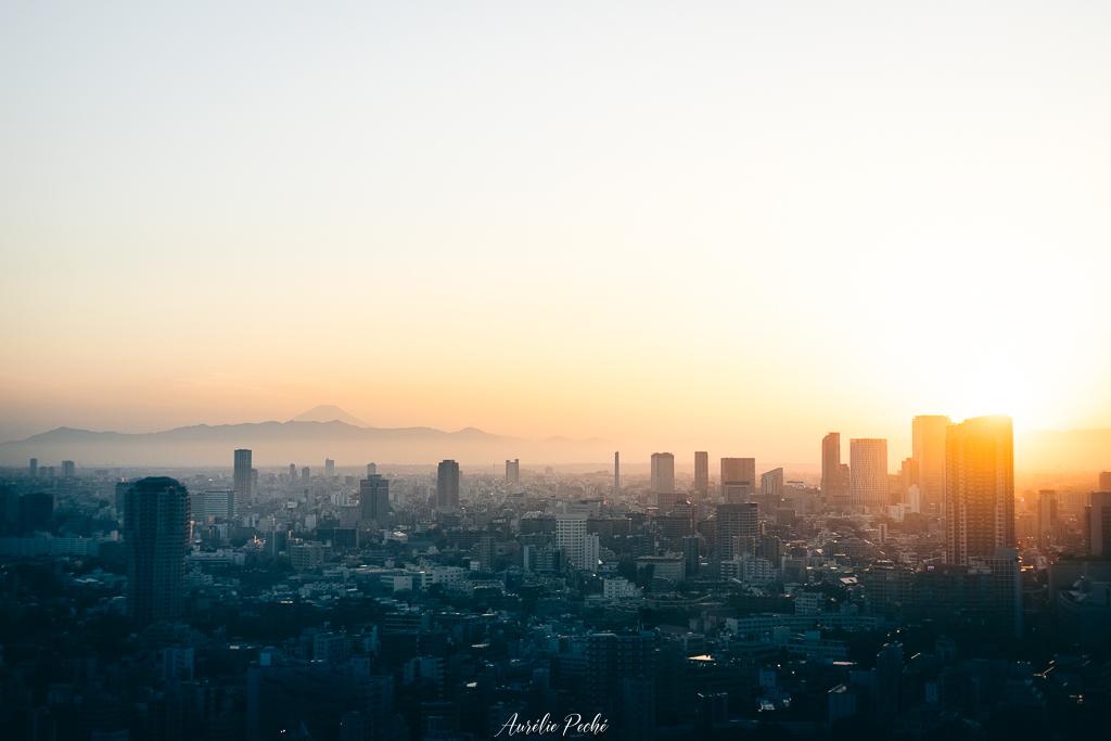 Vue sur Tokyo et le Mont Fuji