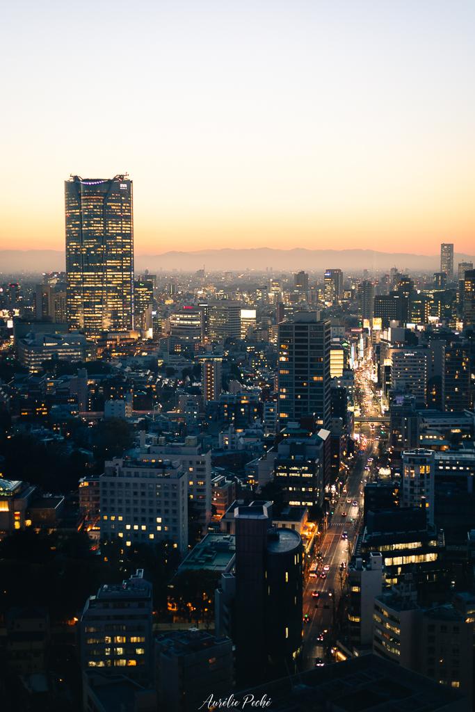 Tokyo au crépuscule