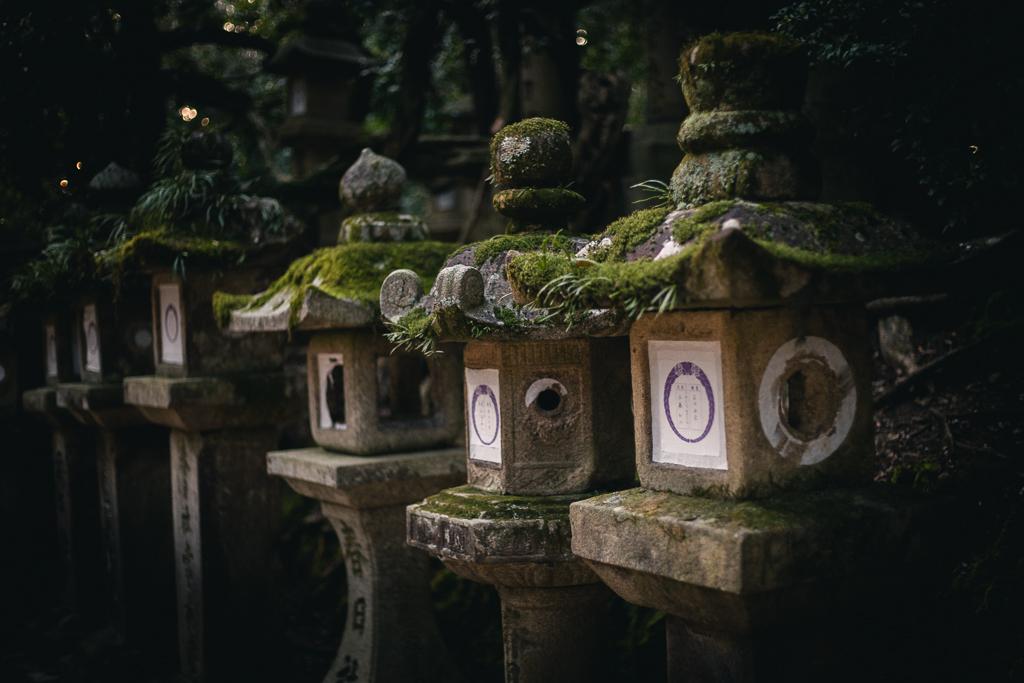 Lanternes de pierres à Nara