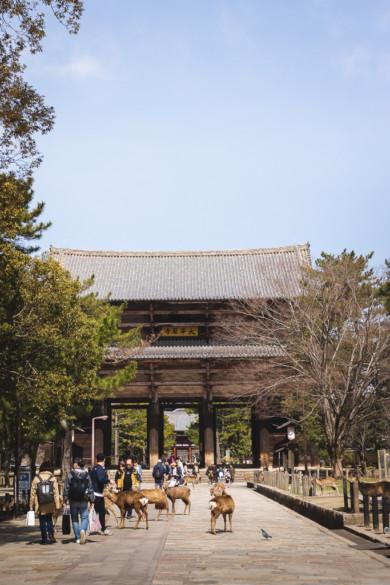 porte du Todai-ji