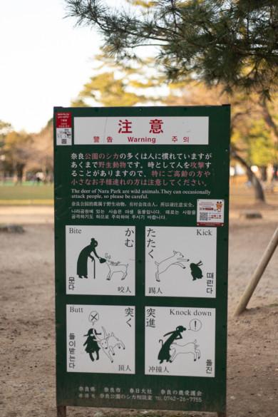Panneau invitant à faire attention aux cerfs