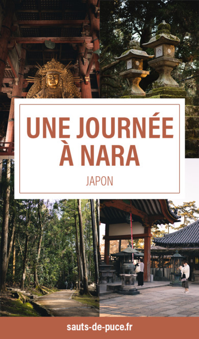 Une journée à Nara, que voir, que faire ?